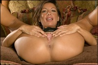 Candice Cardinele porn candice cardinele spreads legs busty latina model